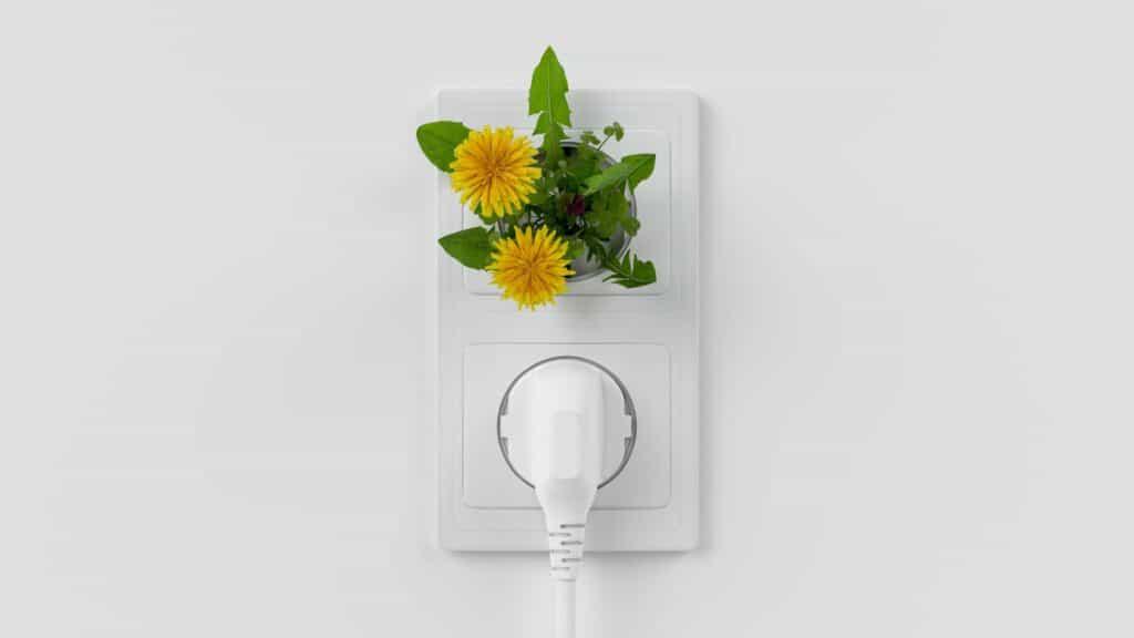 Energiesparen für die Umwelt und den Geldbeutel